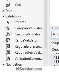 validation controls doğrulama kontrolleri nedir